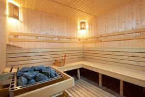 Das Herzstück der Sauna - Saunaöfen